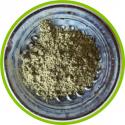 Poudre de thé vert Sencha BIO